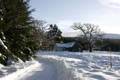 romantic highland hoilday cottage for two 14