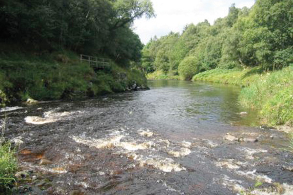 fly fishing holidays on the River Deveron 4