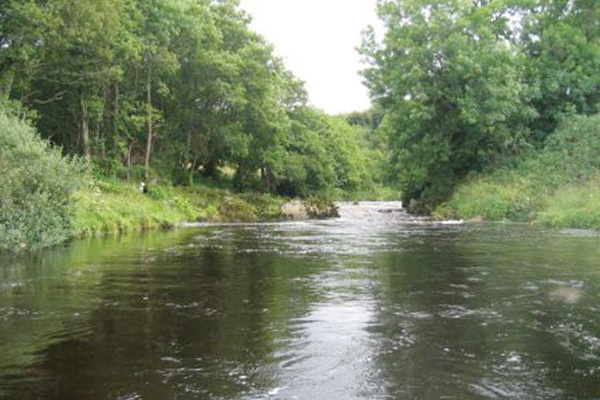 fly fishing holidays on the River Deveron 7