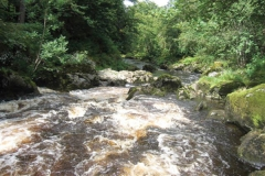 fly fishing holidays on the River Deveron 3