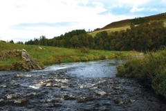 fly fishing holidays on the River Deveron 5